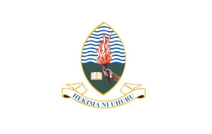 UDSM online application