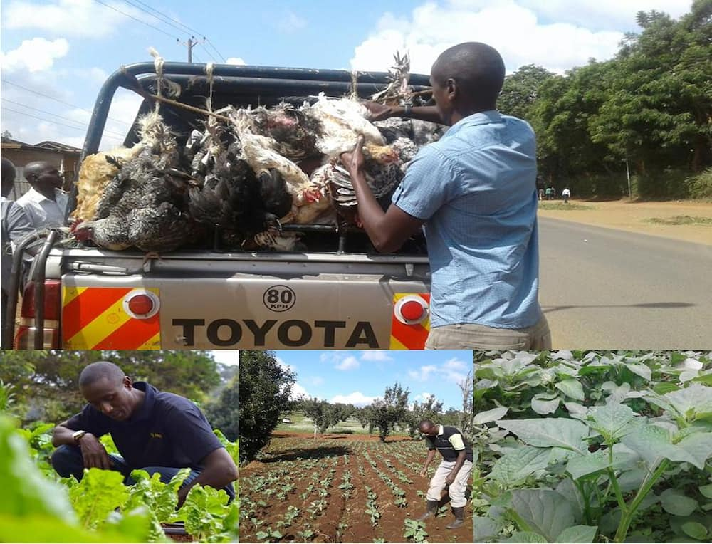 Former TV journalist Caleb Karuga narrates being chased from farm he leased in Kilifi: 'I cried'