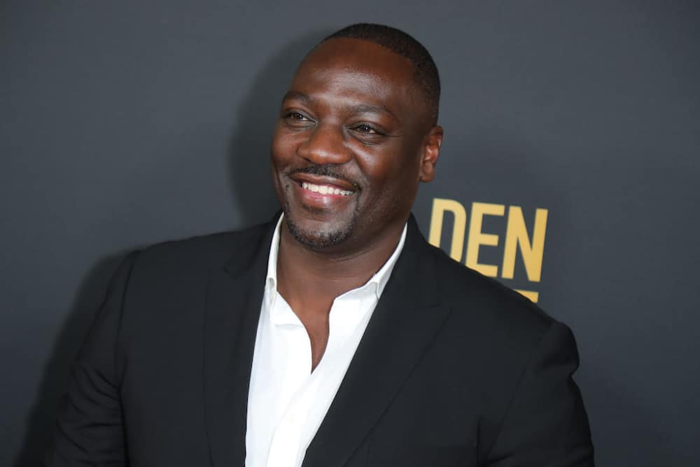 Successful Nigerian actors and actresses in Hollywood