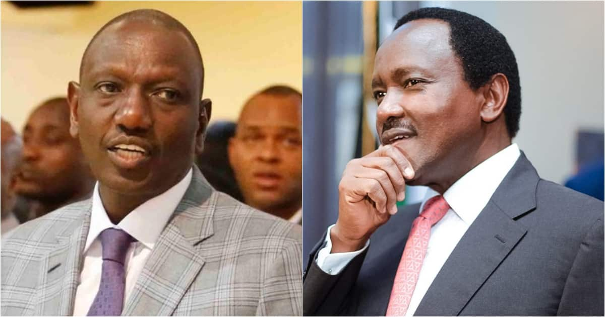 DP Ruto tells leaders seeking to be Uhuru's errand boy to stop looking for his job