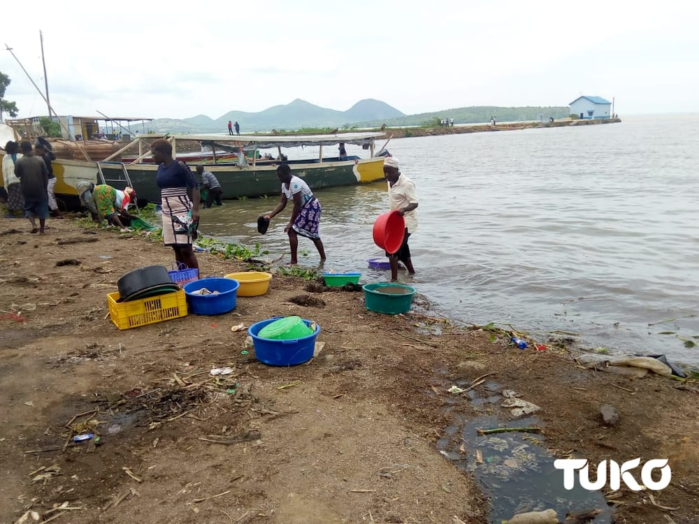 Scientists find over 70 chemicals, ARVs in Lake Victoria, caution residents against domestic use of water