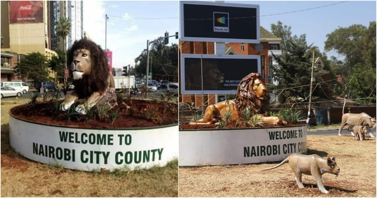 Image result for nairobi beautification programme