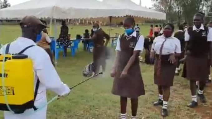Video ya wanafunzi wakipulizwa dawa kabla ya kuingia shuleni yazua tetesi mitandaoni