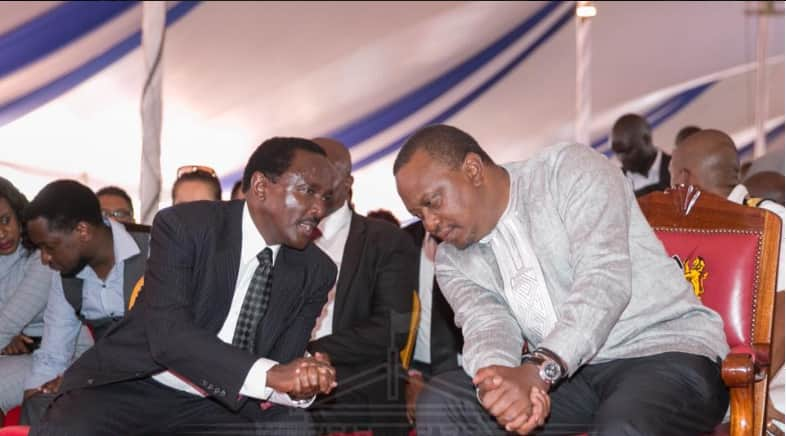 Wiper Party leaders angry at Kalonzo Musyoka for offering to be Uhuru's errand boy