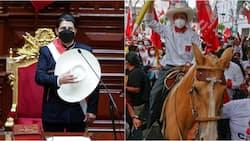 Pedro Castillo: Primary Teacher Floors Veteran Politicians to Become Peru's First 'Peasant' President