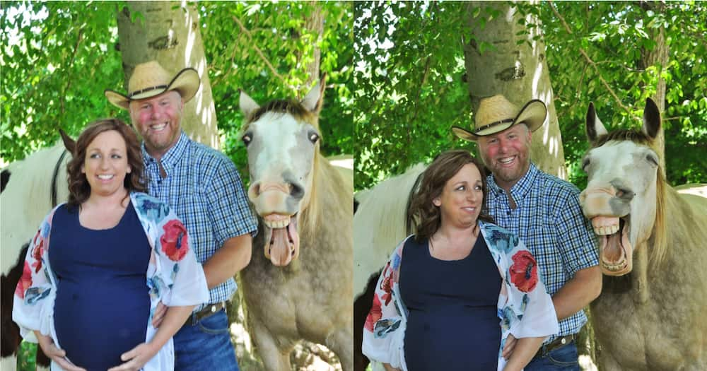 Photographer Kristen Zaffiro's photo of the couple and their funny horse, Buckshot.