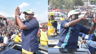 Opinion: William Ruto Has Expertly Mastered Machiavelli's Art of Political Deception, Hypocrisy