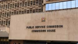 Luhya, Mijikenda and Turkana communities under-represented in civil service, report