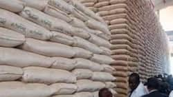 Gov't Released 51, 640 Bags of Toxic Maize to Kenyans, Agriculture PS Hamadi Boga Says