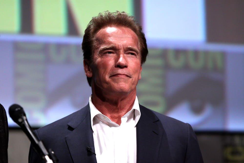 Arnold Schwarzenegger movies