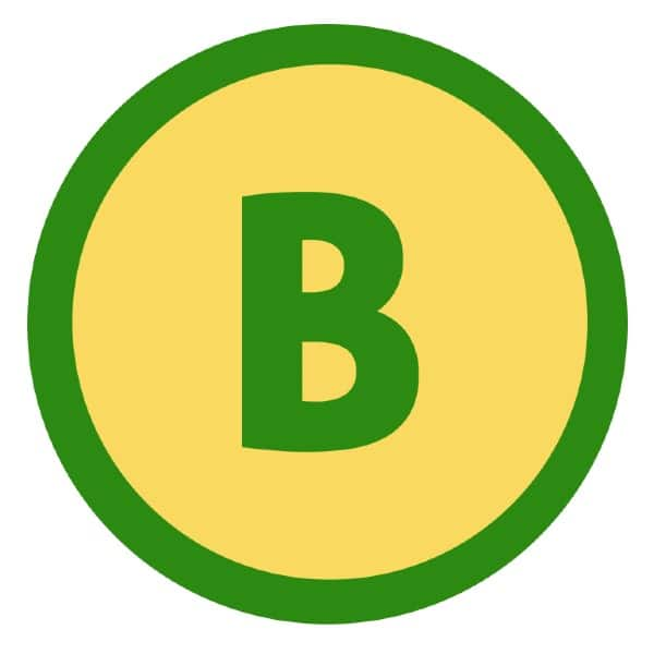 BigPesa app download apk, installation, registration