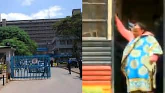 Woman Who Faked Pregnancy With Intent to Steal Baby from KNH Arrested