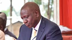 William Ruto: Case on DP's Blockage from Touring Uganda Filed at East Africa Court of Justice