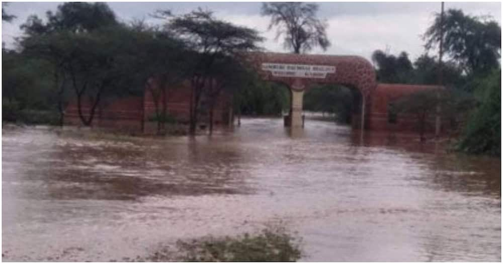 Dozens of tourists evacuated, properties destroyed after river Ewaso Nyiro burst its banks