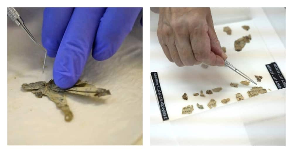 Bible scroll fragments dating back 2,000 years old found in Dead Sea