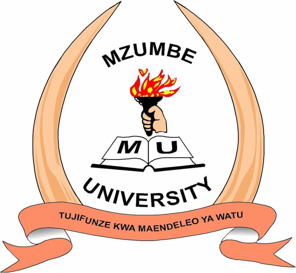 Mzumbe online application