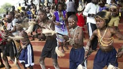 Bukusu parents abandon traditions, take sons to hospitals for circumcision due to COVID-19