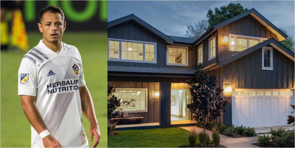 Javier Hernandez's newly-built $5m mansion in LA has 11-bedrooms, swimming pool, spa