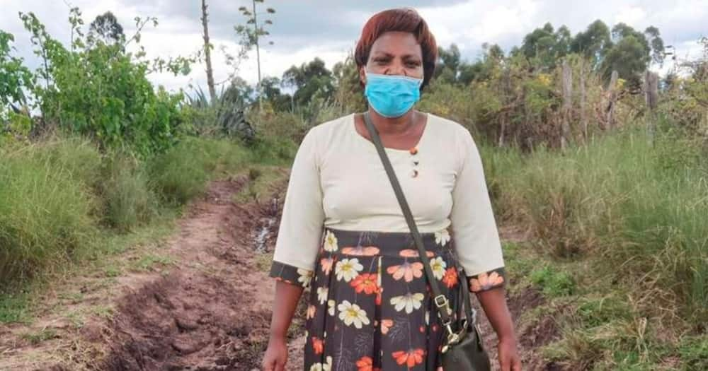 Education Officials Refute Claims Narok Principal Treks for 20km Daily, Summon Her