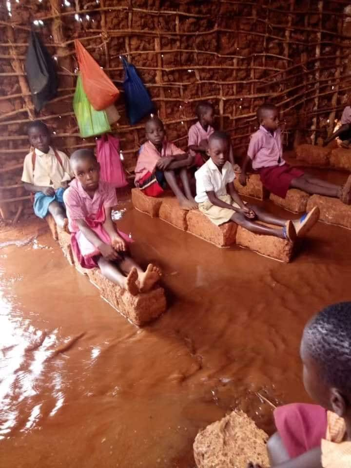 Busia woman representative Florence Mutua has since urged the government to renovate the affected schools before the learning resumes fully. Photo: Eric Kioko