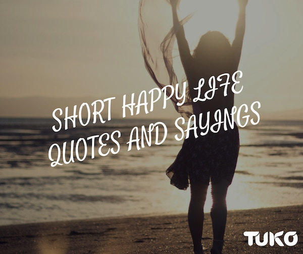 short happy life quotes and sayings tuko co ke