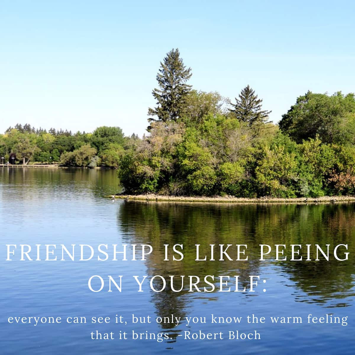 crazy quotes, crazy life quotes, funny stupid quotes