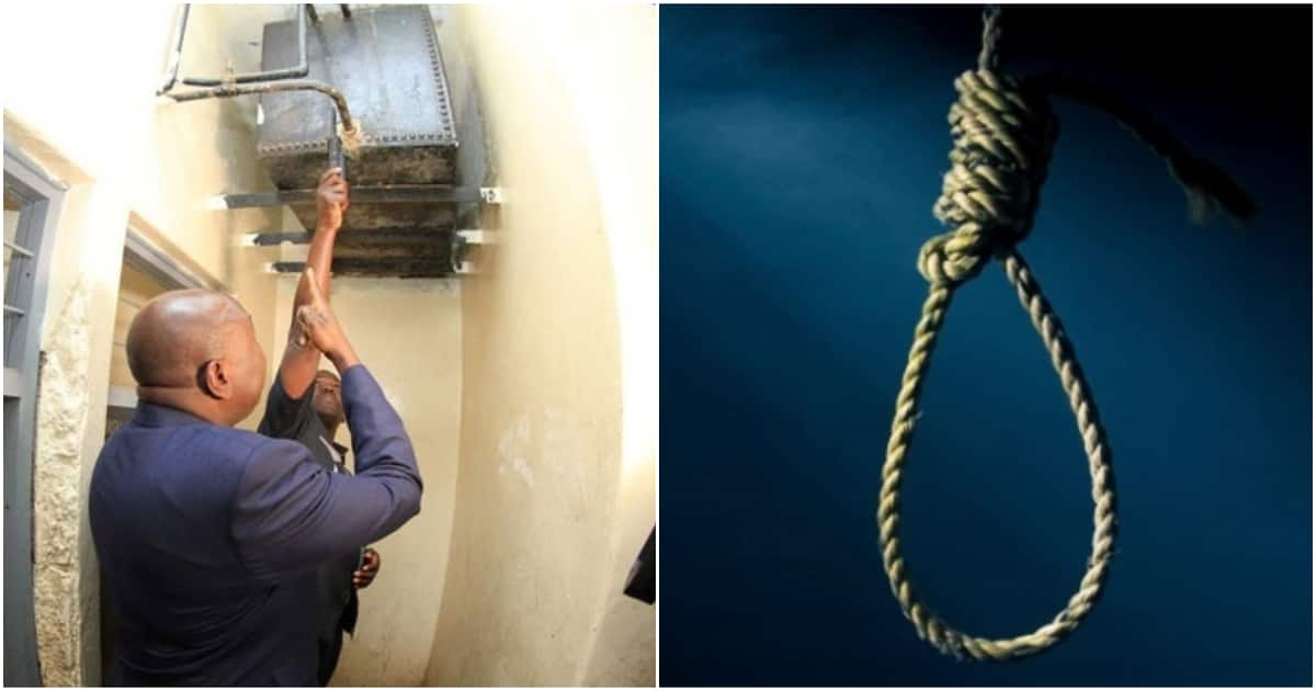 Rape suspect hangs himself using jacket in police cell