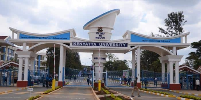 KU student portal: login and guide - portal.ku.ac.ke