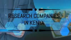 Research 8020 Limited and 12 other market research companies in Kenya 2021