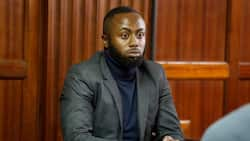 Court Rejects DPP's Bid to Revoke Jowie's Bail, Orders Suspect Out of Nairobi