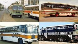 Akamba Bus Tops List of Popular Kenyan Bus Companies that Collapsed