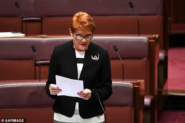 Pauline Hanson: Australian politician under fire for calling George Floyd criminal, dangerous thug