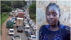 Nairobi family appeals for help to find daughter who vanished on way to school