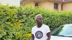 New Willy Paul songs that will keep you on the dance floor
