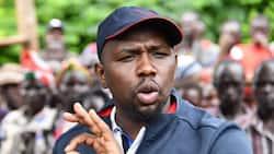 Seneta Murkomen: Itamlazimu Rais Uhuru Kenyatta Amuunge Mkono Raila Odinga 2022