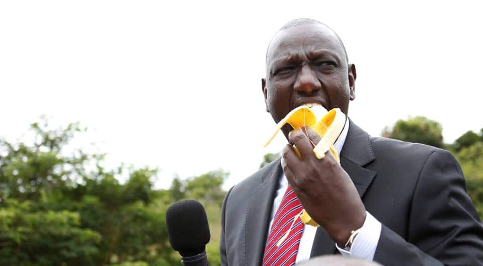 William Ruto urges maize,cane farmers to think alternative crops to improve their lives