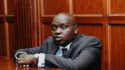 Senator Cherargei claims his security, licensed firearms have been withdrawn