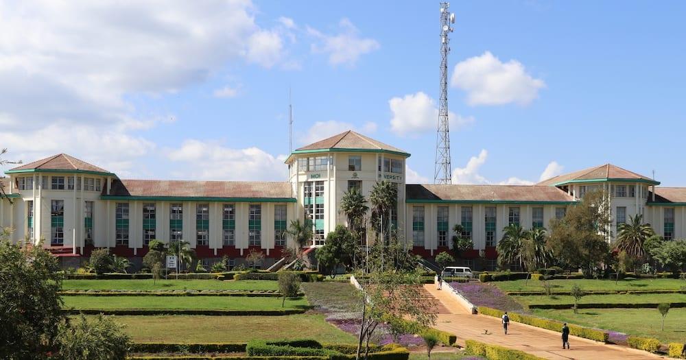 """Moi University student invites William Ruto to institution: """"Huku ndio kuna real hustlers"""""""