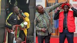 Over 65% of Kenyans Say Jubilee Has Lost Influence in Mt Kenya after Kiambaa Defeat, TUKO Poll
