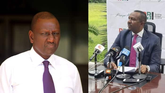 BBI Co-Chair Dennis Waweru Wonders Why Ruto Keeps Criticising His Own Government