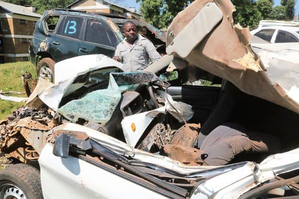 Stray elephant sits on car that hit and broke its leg, kills passenger
