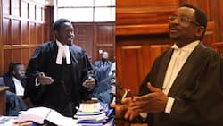 3-Judge-Bench of Court of Appeal Holds BBI Case Management Conference
