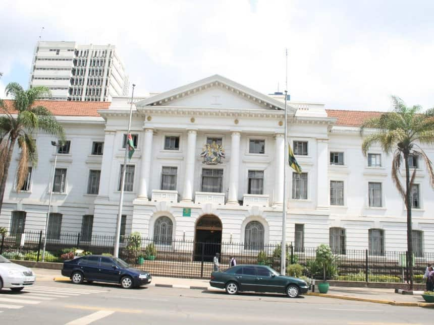 Nairobi County to spend KSh 100 million to deal with stray dog menace
