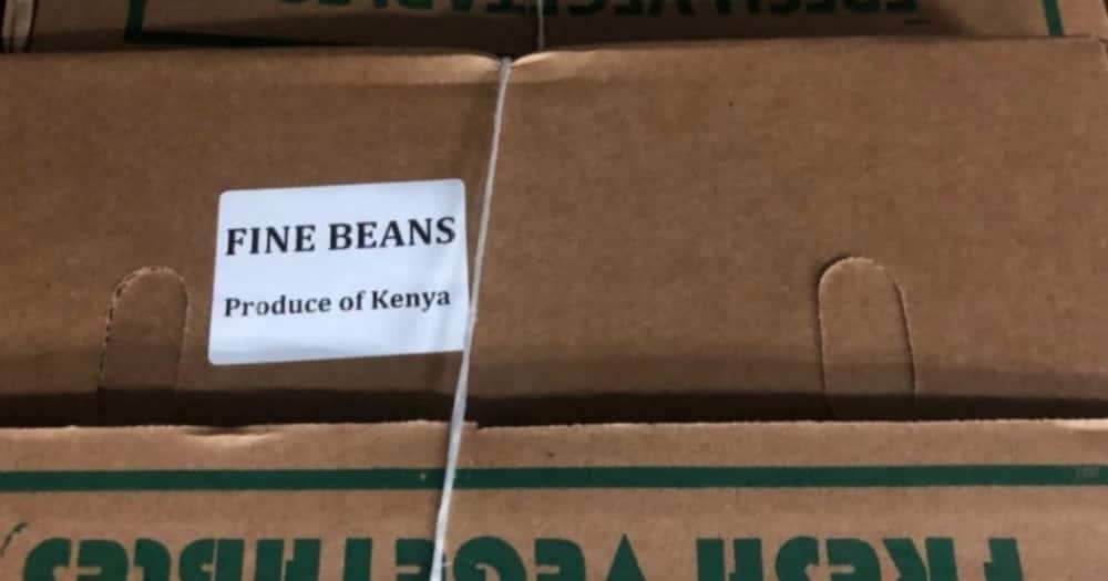 DCI arrests 6 suspects planning to export 150 cartons of miraa disguised as vegetables