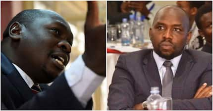 Jubilee MPs badly expose each other in public as maize debate gets nasty