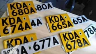 How to apply for a new number plate in Kenya: A step-by-step guide