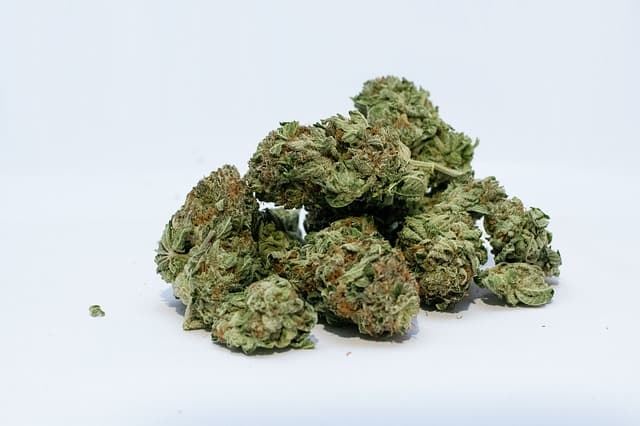 United Nations removes marijuana from list of world's most dangerous drugs