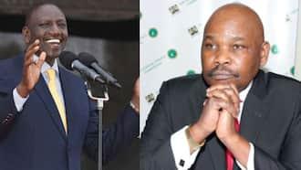 "Makau Mutua Tells Ruto to Stop Begging Uhuru for Reconciliation: ""Ukiachwa Achika"""