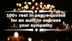 100+ rest in peace quotes for an aunt to express your sympathy