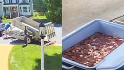 Dad's Bitter Act of Dumping 80,000 Coins on Baby Mama's Door as Final Installment of Child Support